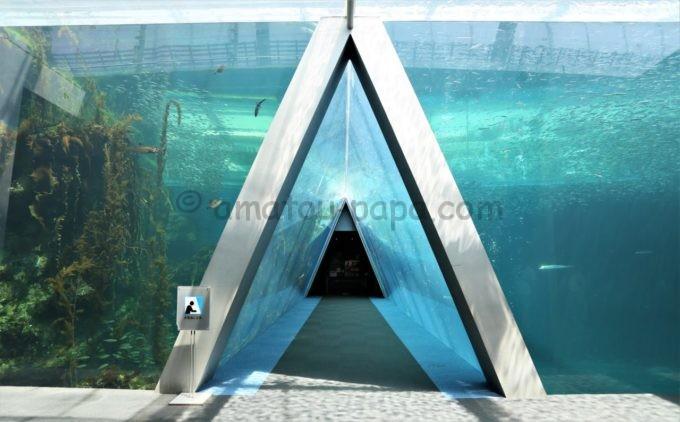 アクアマリンふくしまの潮目の海(親潮・黒潮)にある三角トンネル