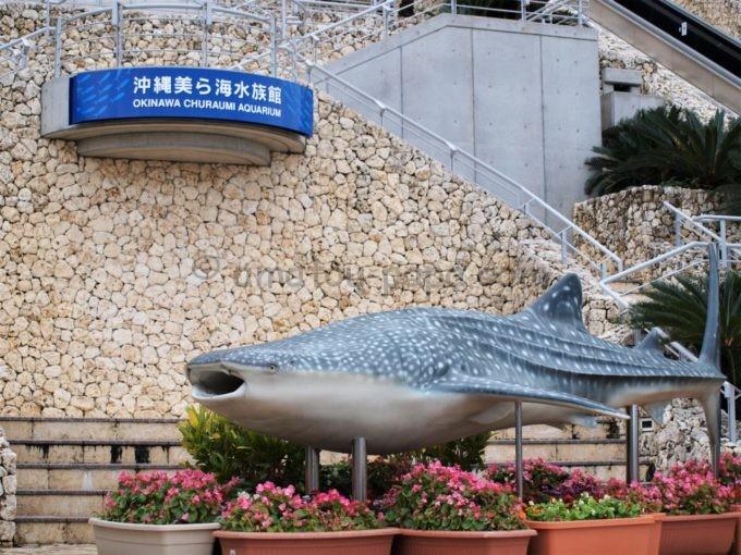 沖縄美ら海水族館のジンベエザメのオブジェ