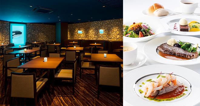 日本で唯一シャチを見ながら食事が出来る鴨川シ―ワールドのレストラン「オーシャン」