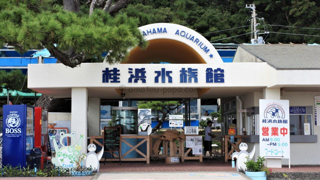 水族館 桂浜