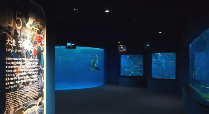 仙台うみの杜水族館の「大漁 宝のうみ」