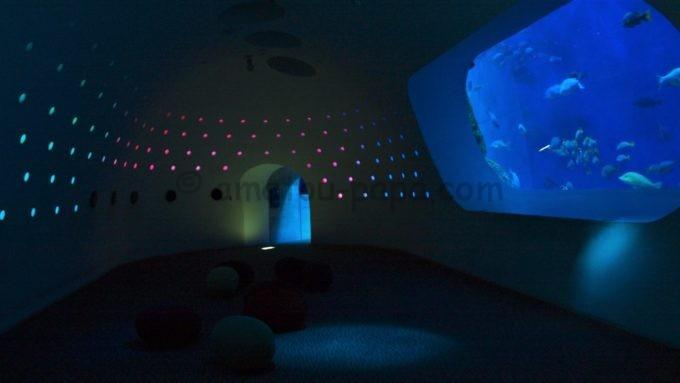 大分マリーンパレス水族館「うみたまご」のうみたまホール(大回遊水槽1F)