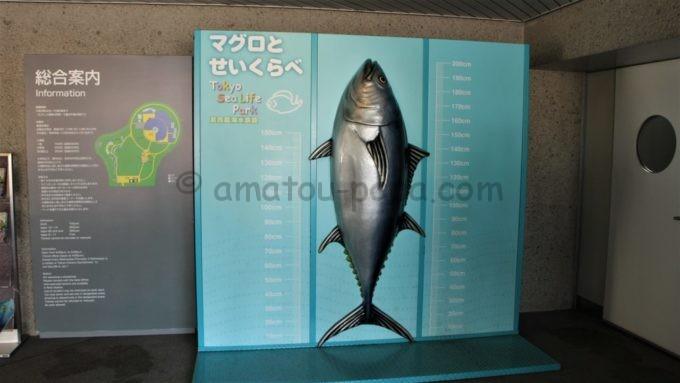 葛西臨海水族園のマグロのオブジェ