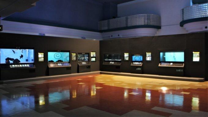 新潟市水族館 マリンピア日本海の館内