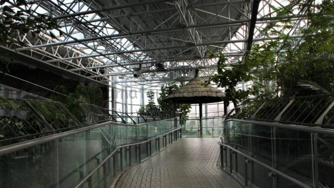 東山動植物園の温室