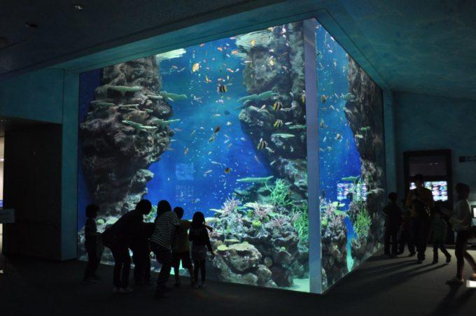 しまね海洋館アクアスの雰囲気