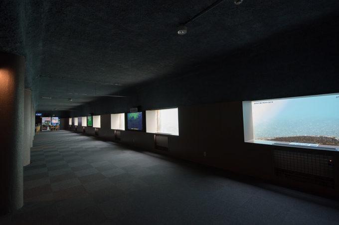 サケのふるさと千歳水族館の水中観察窓
