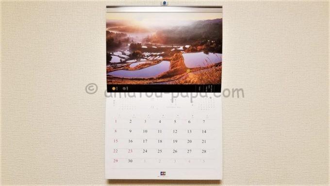 JCBオリジナルカレンダー2020の11月