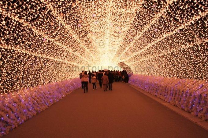 なばなの里の光のトンネル