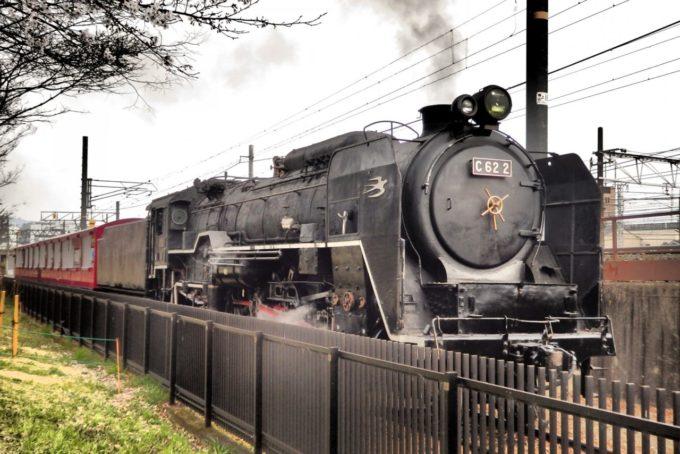京都鉄道博物館のC62形2号機