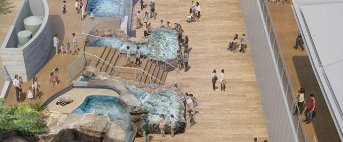 四国水族館の水遊の景