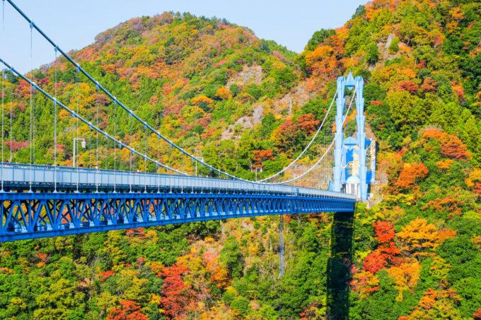竜神大吊橋(紅葉シーズン)