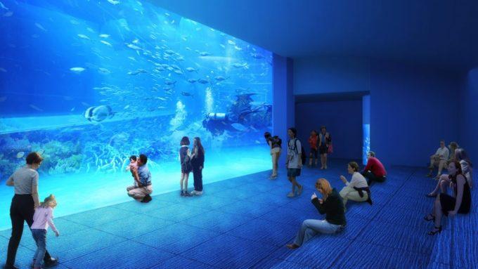 高知県立足摺海洋館 SATOUMIの⻯串湾大水槽