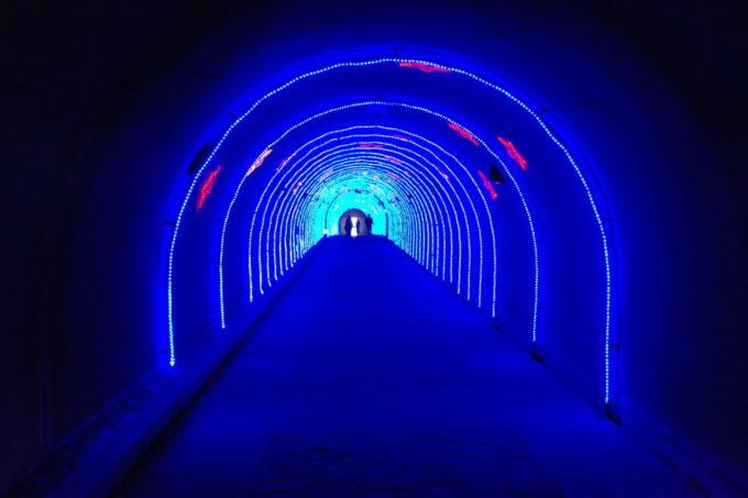 あわしまマリンパークのトンネル