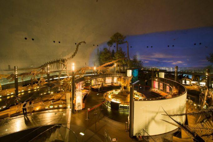 福井県立恐竜博物館の雰囲気