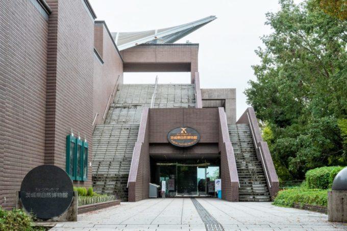 ミュージアムパーク茨城県自然博物館の入り口