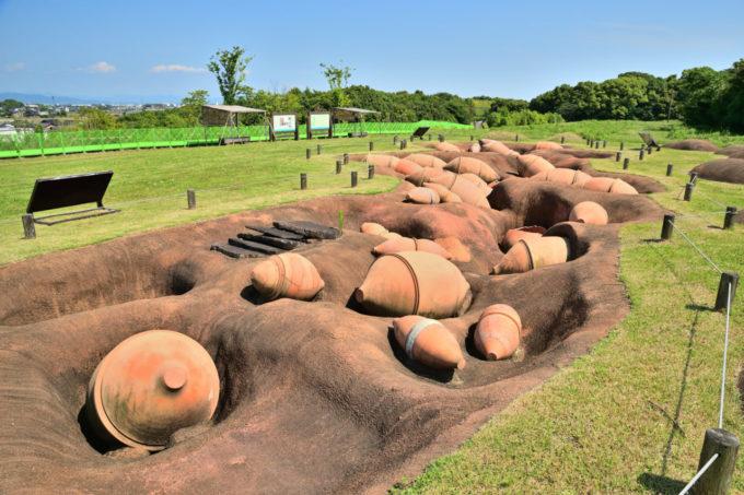 吉野ヶ里遺跡の甕棺墓群(かめかんぼぐん)