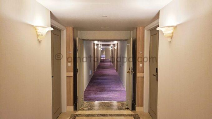 グランドニッコー東京ベイ舞浜の11階フロア(ニッコーフロア)