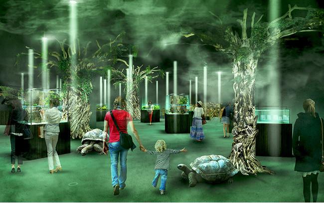 新感覚水族館atoa(アトア)の霧が立ち込める樹海の森「EREMENTS-精霊の森」